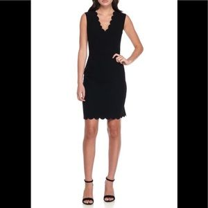 NWT French Connection Scalloped Sheath Dress 6